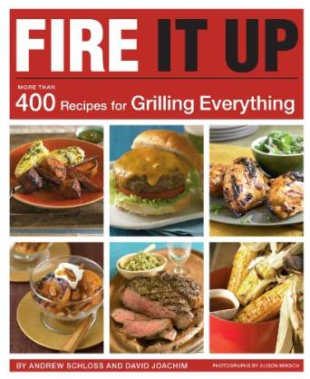 fire it up book cover